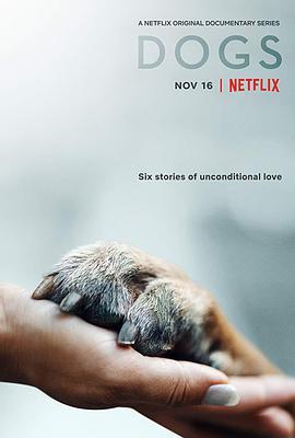 愛犬情深 第一季