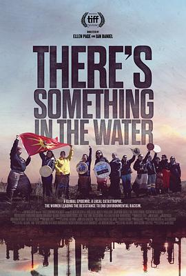 毒水:環境種族主義